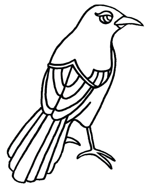 Eyeball Coloring Pages Mockingbird Has Beautiful Eye Coloring Pages