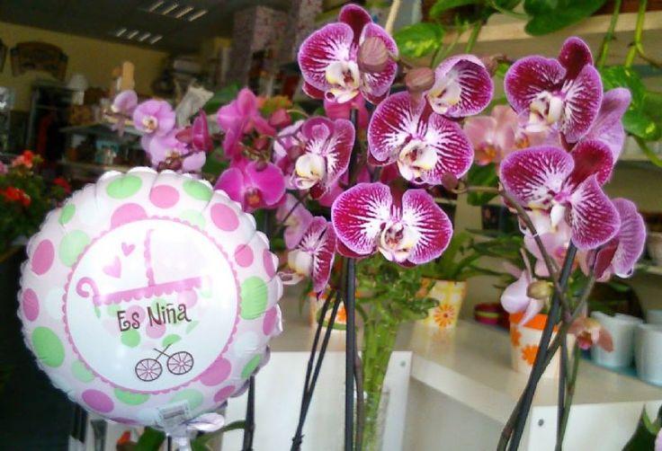 Cómo comprar y enviar flores por internet