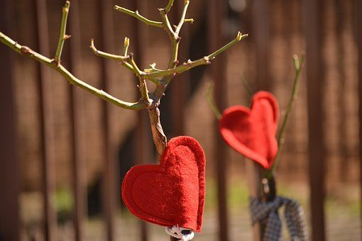 Red Hearts, Decoration, Rose Tree