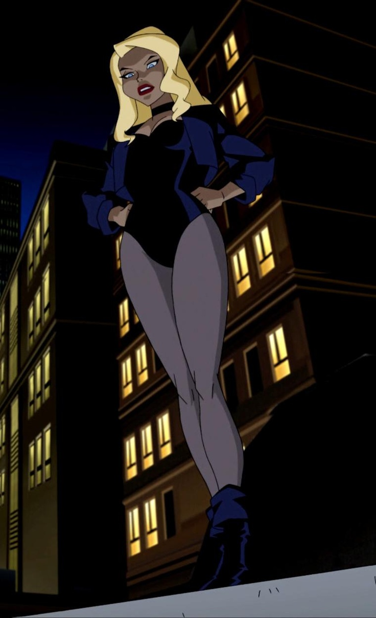 Black Canary From The Justice League Cartoon. She's really one of my favourites in JLA! Just love her character!