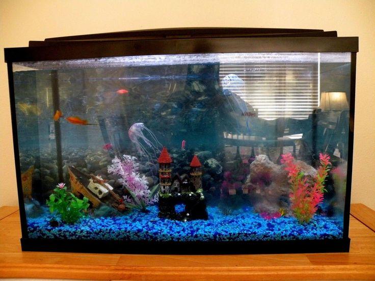 Top 25 ideas about 30 gallon fish tank on pinterest for 30 gallon fish tank