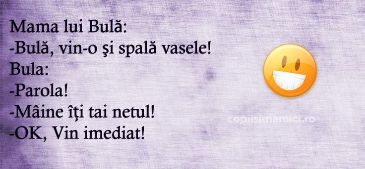 Bula Spala Vasele - Bula spala vasele! Spune-mi parola si el spal! Maine iti tai netul! Ok mama, vin acum!