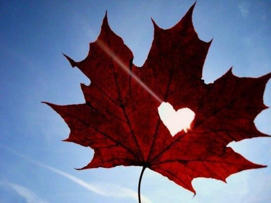 Love being canadian!