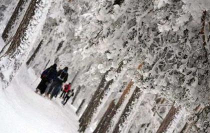 Raquetas de nieve en Familia en el Puerto de Navacerrada » Tuawo