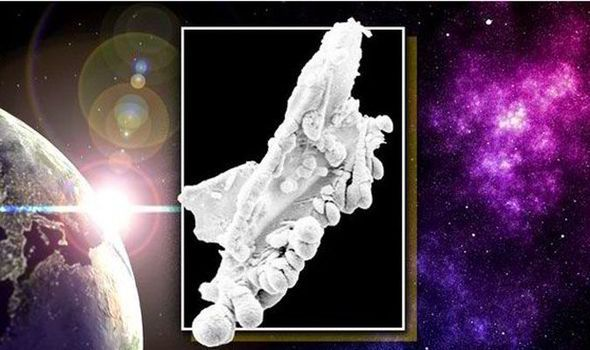 The image that proves aliens existhttp://www.express.co.uk/news/nature/518510/Aliens-do-exist-scientists-find-proof-of-life-in-space