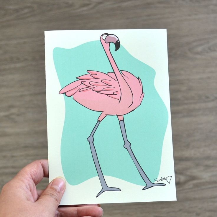 Greeting Card for any occasion, Illustrated Flamingo Card, Blank Inside by AMTaylorArt on Etsy https://www.etsy.com/ca/listing/280630698/greeting-card-for-any-occasion