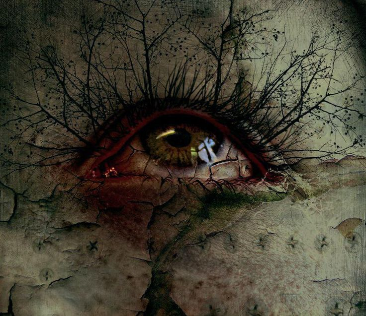 # EYES DEAD BRANCHES
