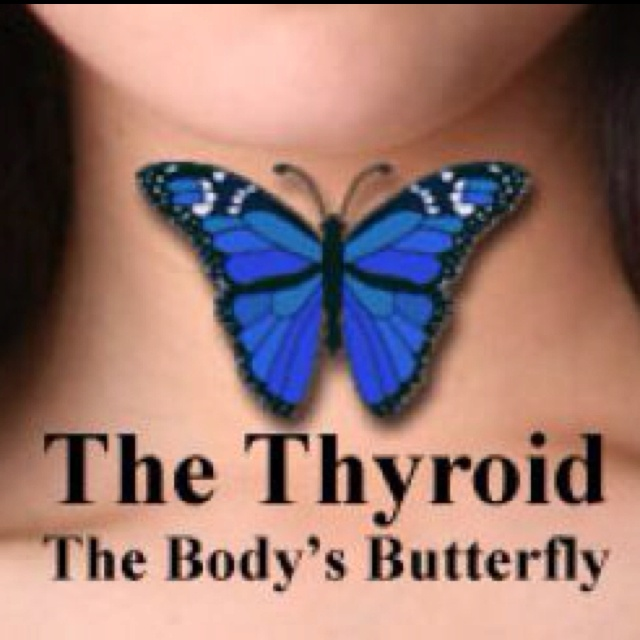 The Thyroid