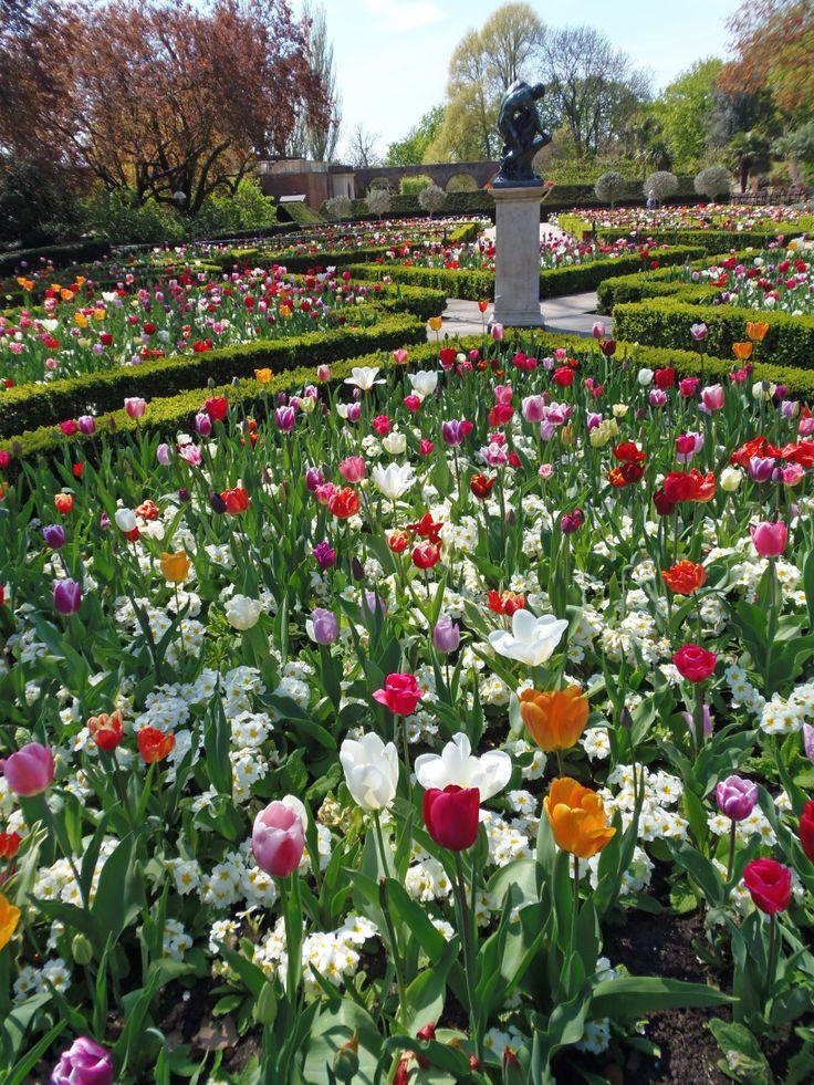 In the Dutch Garden, Holland Park, London