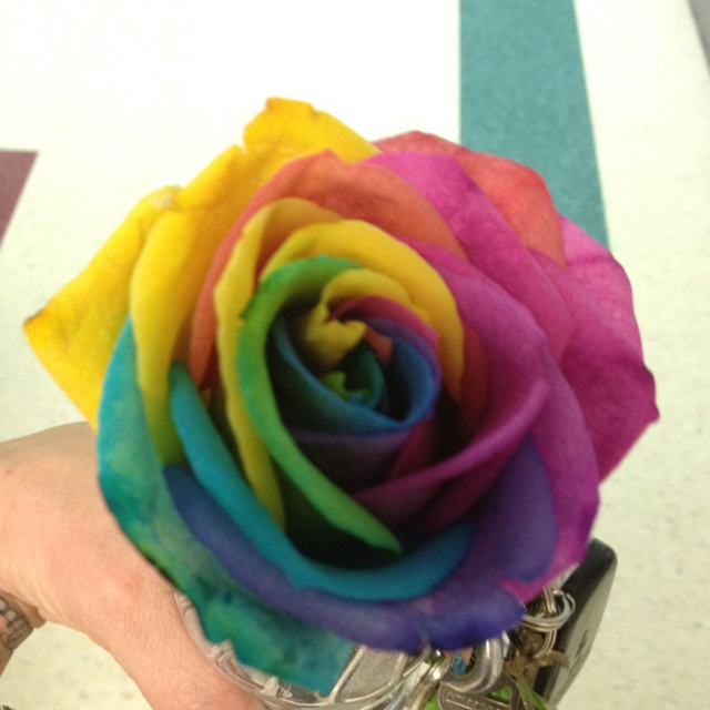 Food color Rose!! Cut stem in 4 and place each in different colors ;) with water