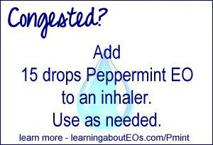 17 Best Images About Essential Oil Peppermint On Pinterest