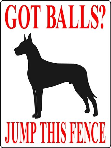 After I get my Great Dane I will get this sign!! Too funny :)