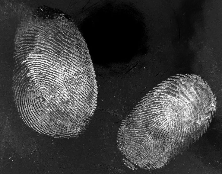 Forensic Photography Workshop (CPD)