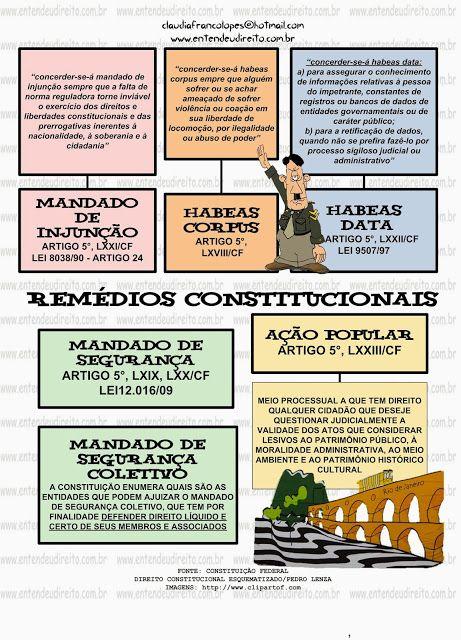Do Blog: ENTENDEU DIREITO OU QUER QUE DESENHE ???: REMÉDIOS CONSTITUCIONAIS
