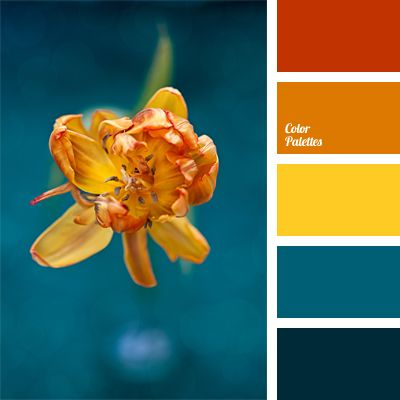 25 best ideas about orange color palettes on pinterest - Yellow and blue paint scheme ...