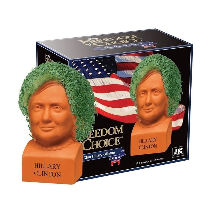 Chia Pet Grass Planter: Hillary Clinton, Freedom of Choice - Multi
