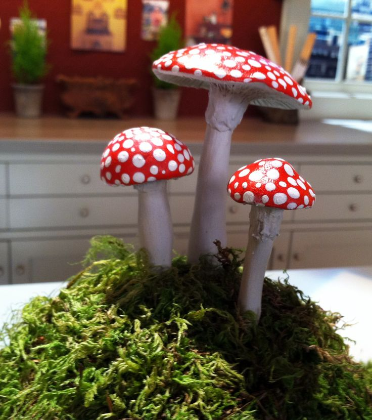 1000 Images About Garden Toadstools On Pinterest 400 x 300