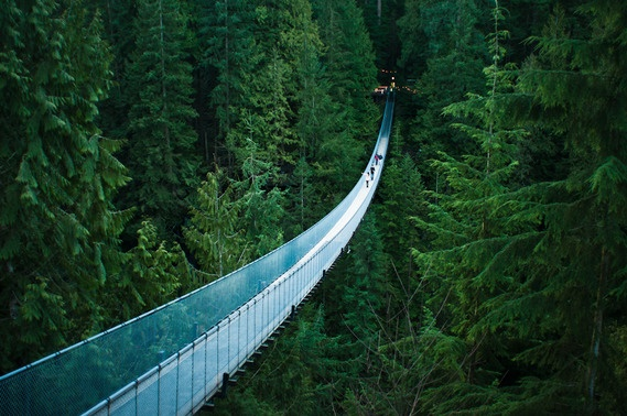 Located in the rainforest on the north shore of Vancouver, British Columbia, the Capilano Suspension Bridge is one of the area's top tourist attractions, hosting over 800,000 visitors per year.