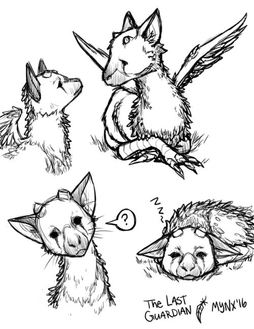 Omg What is this? >Trico from The Last Guardian (game) ! He's the cutest !