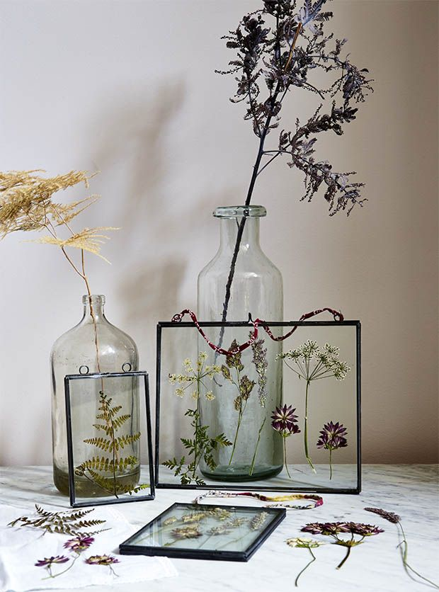 Master the art of flower pressing with this simple how to press flowers guide. Display dried plants and flowers in glass frames for a lasting arrangement.
