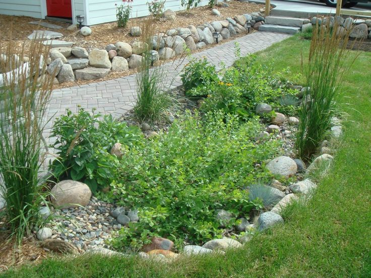 107 best images about rain gardens on pinterest gardens for Rain garden design