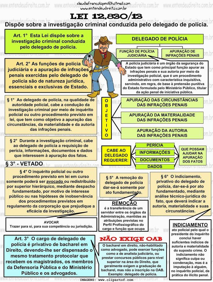 ENTENDEU DIREITO OU QUER QUE DESENHE ???: DELEGADO DE POLÍCIA - LEI 12.830