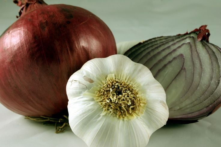 Onions and Garlic, 2 prebiotic foods that feed our probiotic bacteria. - Purposeful Nutrition