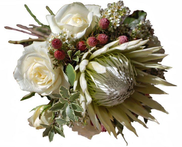 King_w_Roses.jpg (720×581)