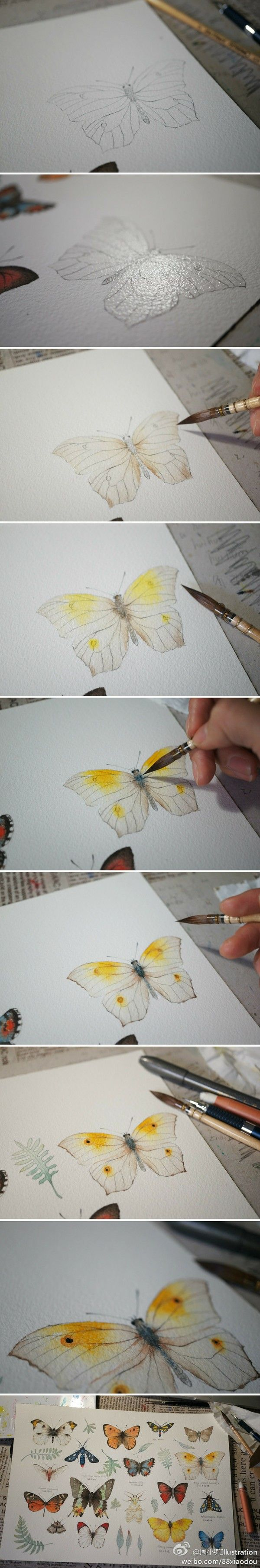 .Painting a butterfly in watercolor.