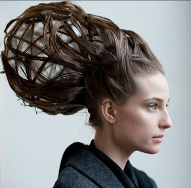 b90378d741f39b4044d64f6f7b03f98d--fairy-hairstyles-twisted-hairstyles