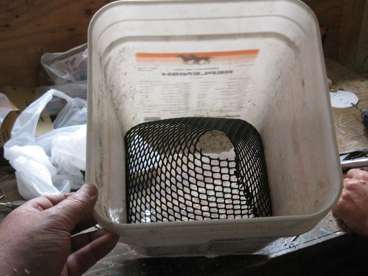 Mesh in place hole looks about the right size for the jumbo prawns here in BC.