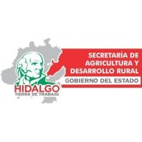 Secretaria de Agricultura y Desarrollo Rural del Gobierno del Estado de Hidalgo Francisco Olvera Ruiz Gobernador Logo. Get this logo in Vector format from http://logovectors.net/secretaria-de-agricultura-y-desarrollo-rural-del-gobierno-del-estado-de-hidalgo-francisco-olvera-ruiz-gobernador/