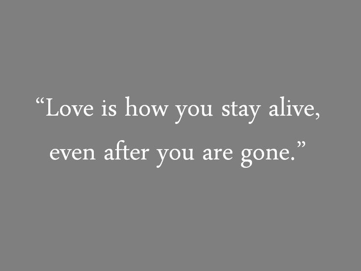 Tuesdays with Morrie quotes, on love
