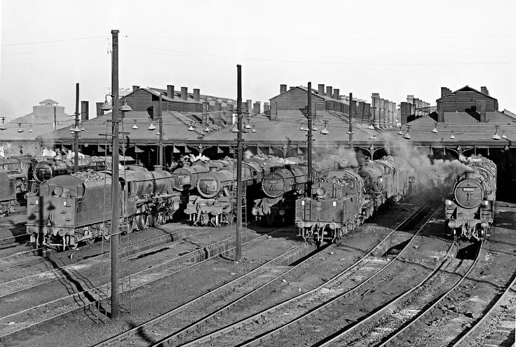 A steamy Willesden shed on 10/6/64 with (l to r) 70034 'Thomas Hardy', m45056, 45328, 42431, 48479, 78033 and 73033.