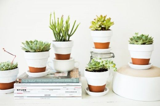Painted pots and succulents, by Offbeat + Inspired