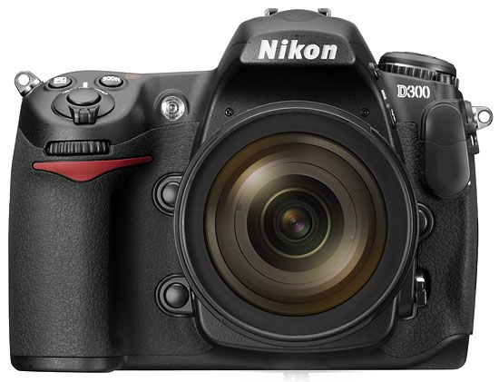 Nikon D300. Love this camera (actually have a slight sentimental attachment to it, which is weird for me). Bought used, I've had it two years and now time for another upgrade.