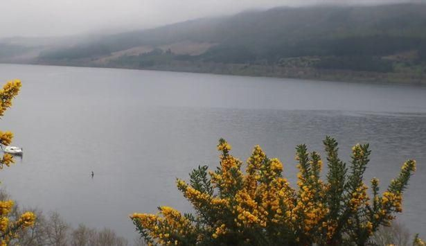 Лох-несское чудовище снова заметили на поверхности озера https://joinfo.ua/curious/1208857_Loh-nesskoe-chudovische-snova-zametili.html