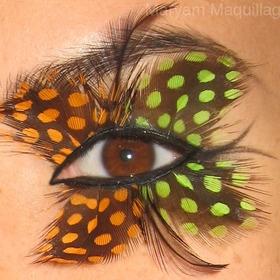 pretty: Photos, Make Up, Eye Makeup, Butterflies, Butterfly Eyes, Butterfl Eye, Eyes Wide, Halloween