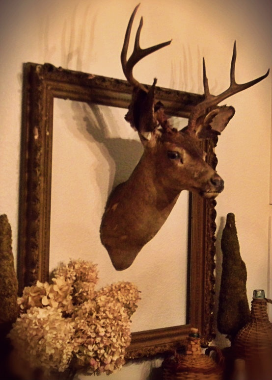 For my friends whose husbands insist on having a deer head in the house: Framed Deer! (This kind of thinking may be a contributing factor into why I don't have a husband...)