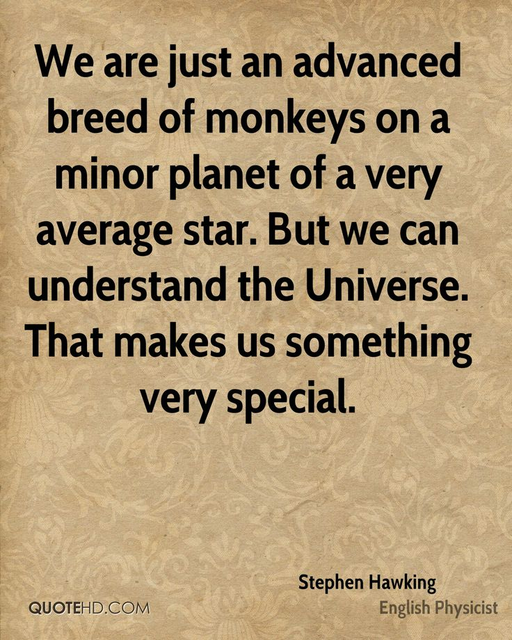 Stephen Hawking Quote shared from www.quotehd.com