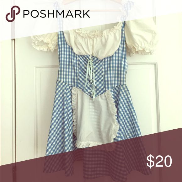 SEXY DOROTHY HALLOWEEN COSTUME ADULT DOROTHY HALLOWEEN COSTUME. WORN ONCE. Other