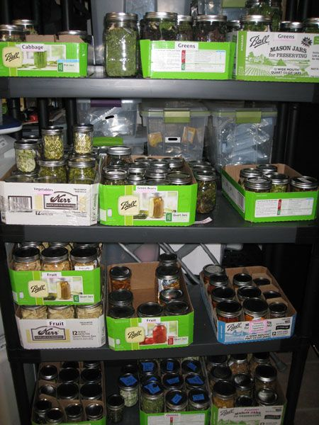 Dehydrating Basics « nc preppers - great article.  Makes me want to fire up my dehydrator again.  Hmmmm I have lots to dehydrate.  I should go through some of my older bottles of canned goods and dehydrate them.