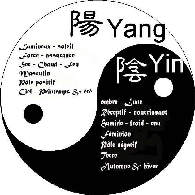 Le yin est une force négative, passive, féminine. C'est la couleur noire de la lune. Le yang est une force positive, active, masculine. C'est la couleur blanche du soleil.