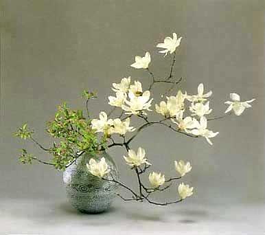 Ikebana: Ikebana Arrangements Japan, Ikebana Floral, Art Floral, Flowers Arrangements, Floral Arrangements, Magnolias Ikebana, Floral Japan, Japan Ikebana, Ikebana Bonsai