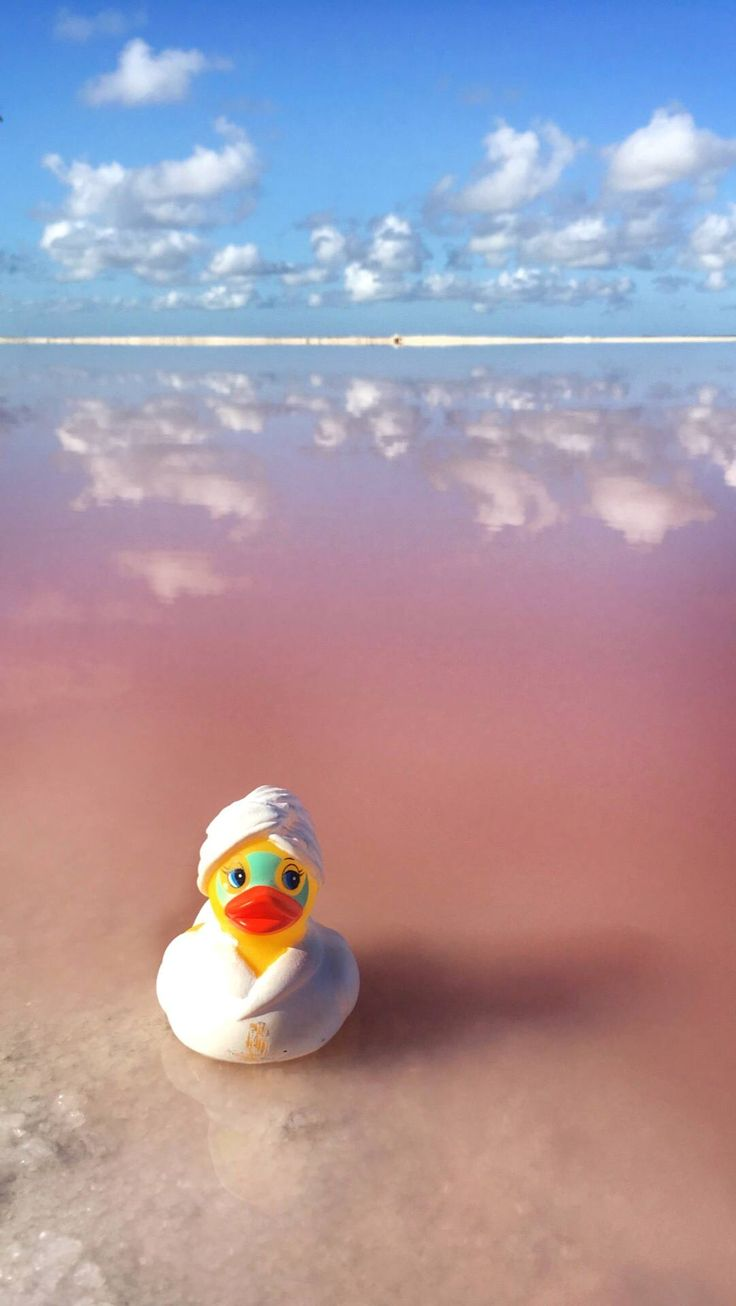How to Arrange a Trip to Las Coloradas Pink Lakes, Mexico | Anna Everywhere