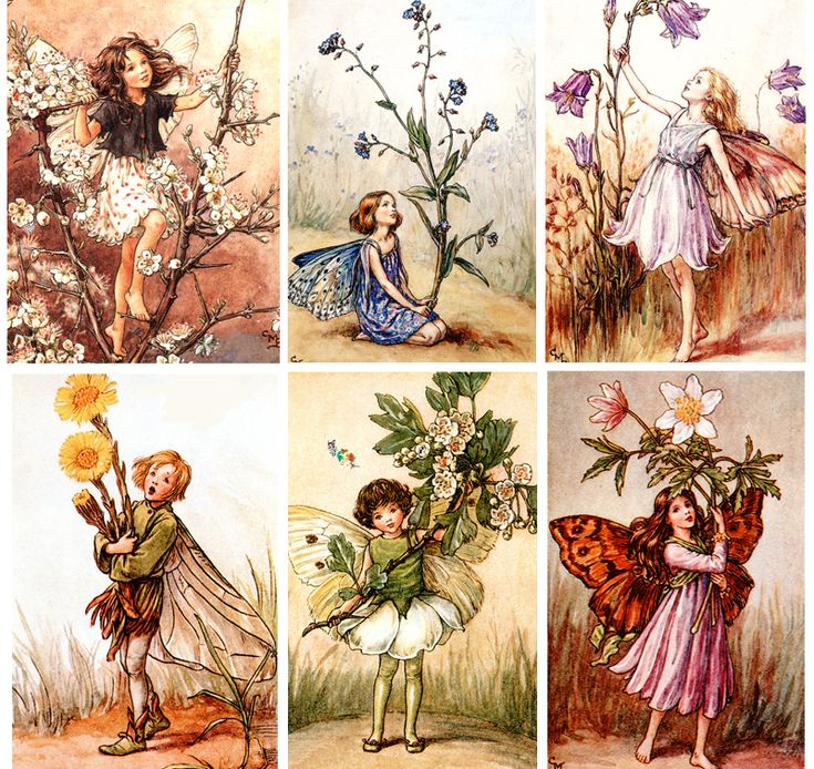 Flower Fairies by Cicely Mary Baker