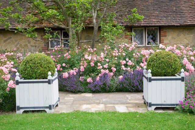 Garden ideas border ideas path ideas hedge ideas for Garden design ideas lavender