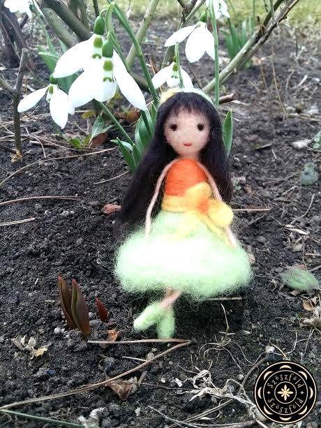 nemezbaba, hóvirág
