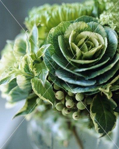 living4media - close-up of green cabbage in modern fresh flower arrangement