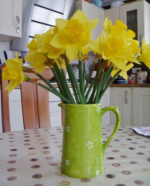 Spring Daffodils....., via Flickr.
